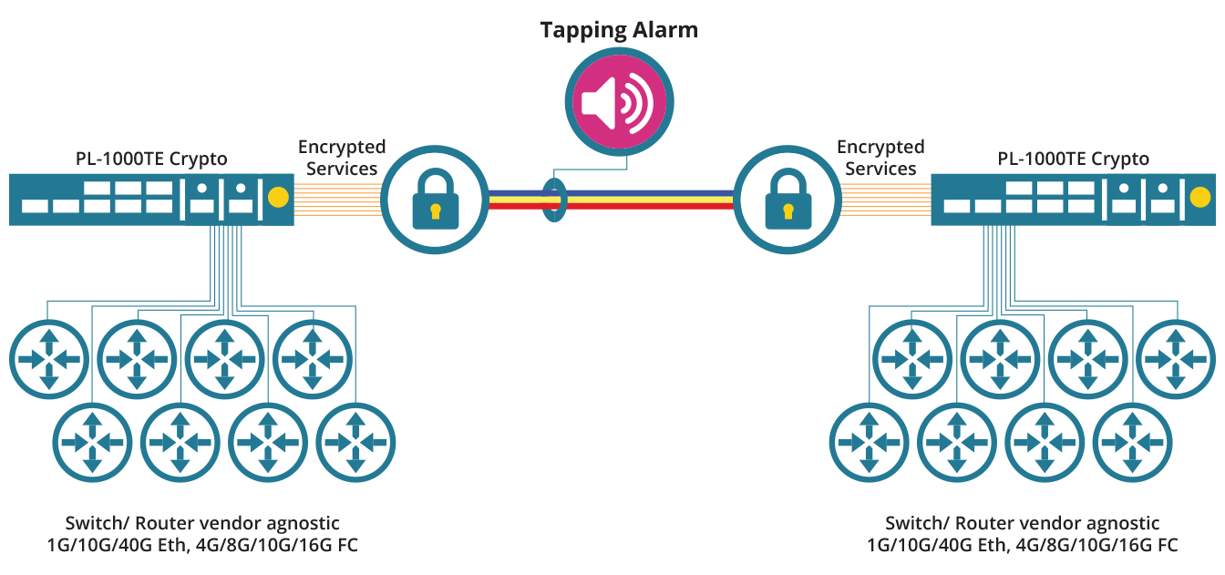 Layer-1 Optical Encryption Over Dark Fiber / DWDM / OTN